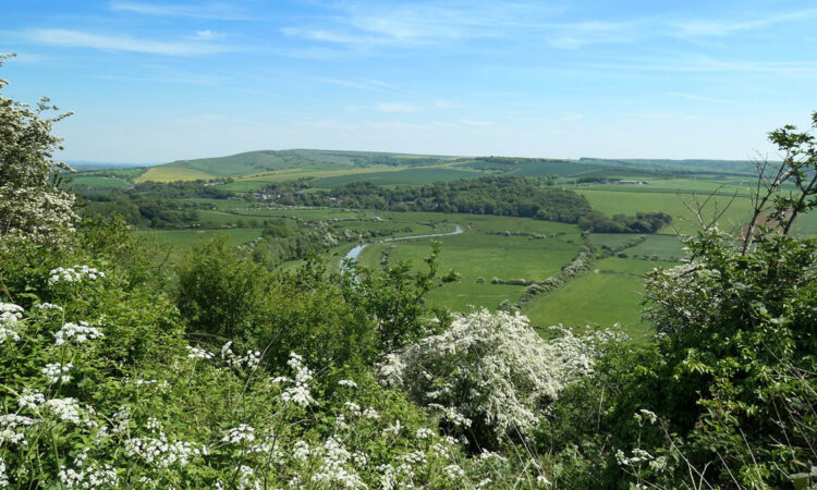 View Of South Downs